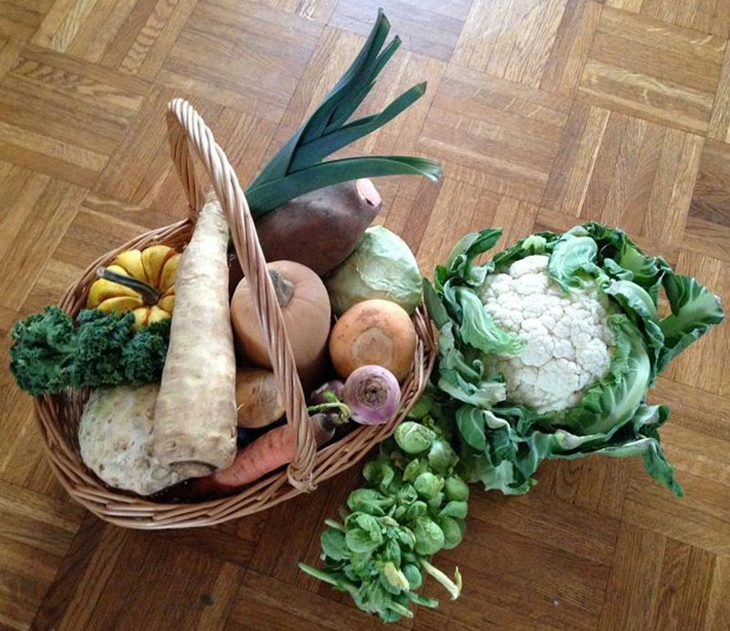 pic-atelier-courges
